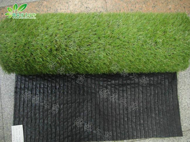 仿真地毯草坪02