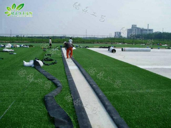 仿真地毯草坪04