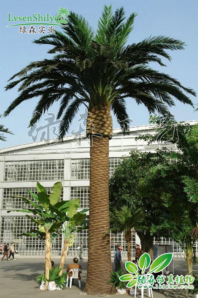 AG亚博海藻树04