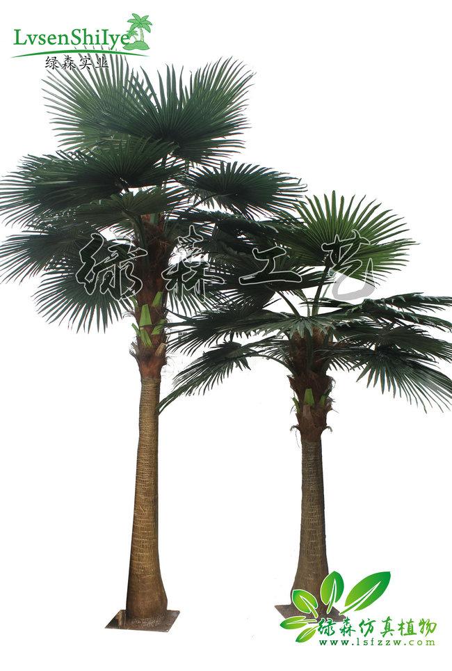 AG亚博蒲葵树组合