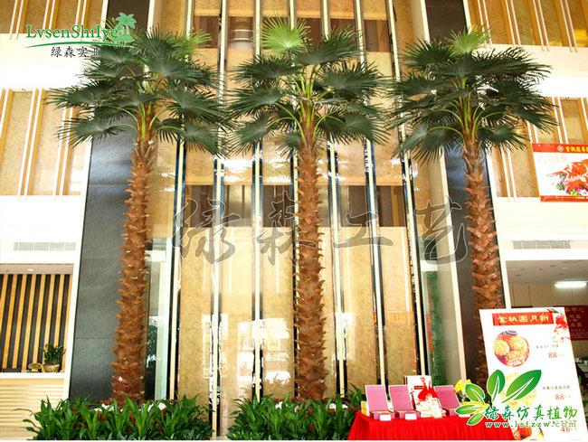 AG亚博棕榈树05
