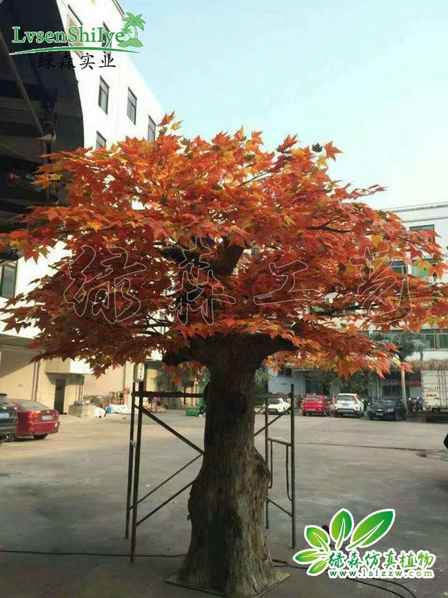 AG亚博枫树04