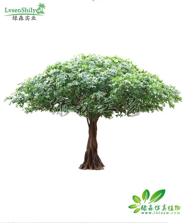 AG亚博榕树08