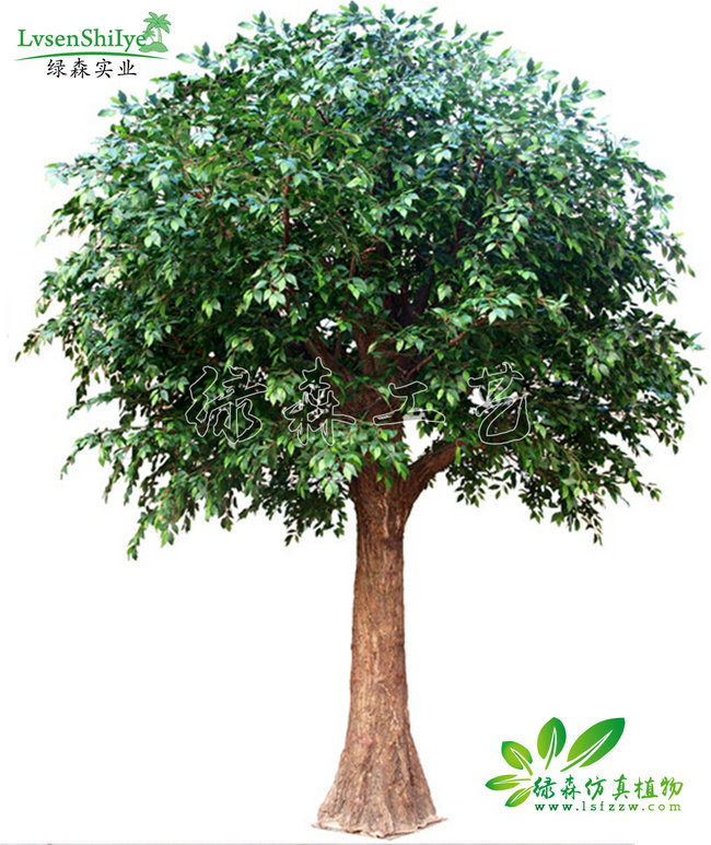 AG亚博榕树07