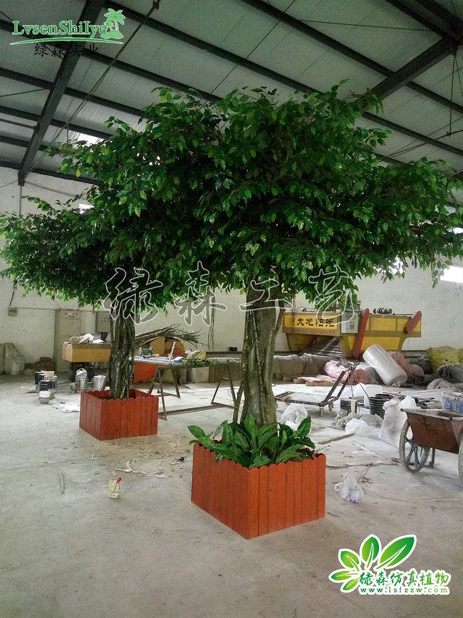 AG亚博榕树05