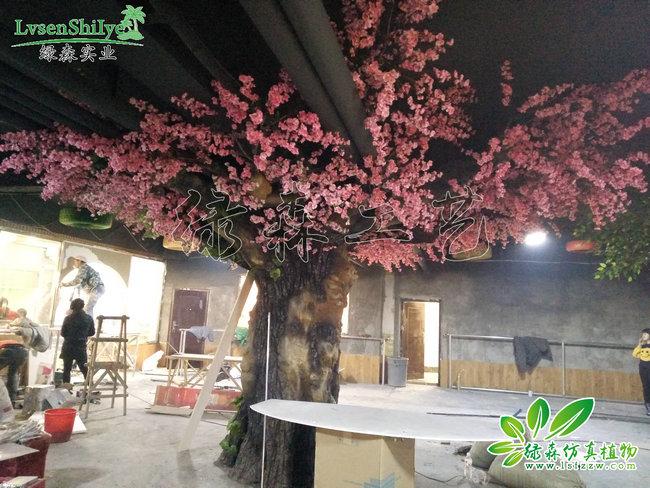 AG亚博桃花树05