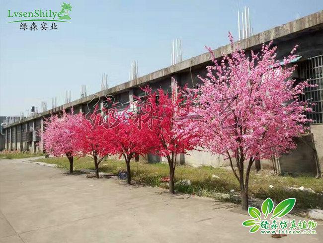 AG亚博桃花树09