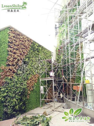 AG亚博植物墙24