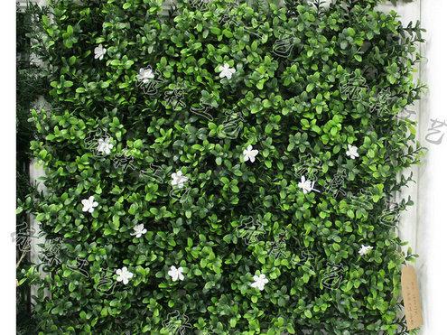 室外植物墙22