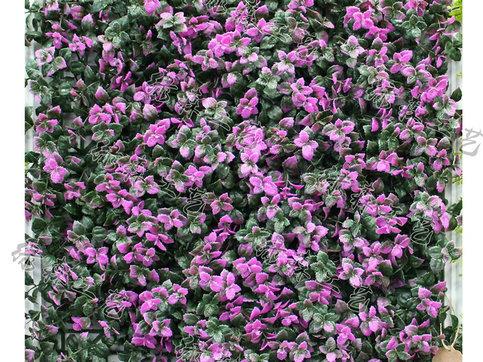 室外植物墙06