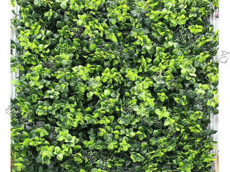 室外植物墙19
