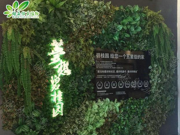 室外植物墙13
