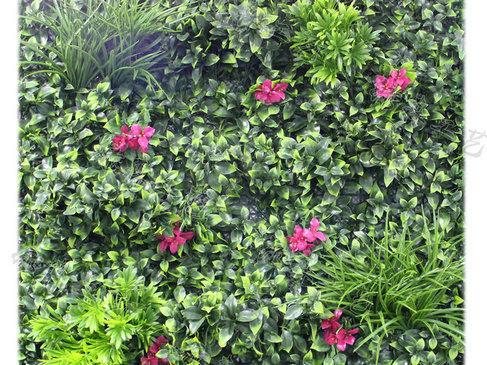 室外植物墙12