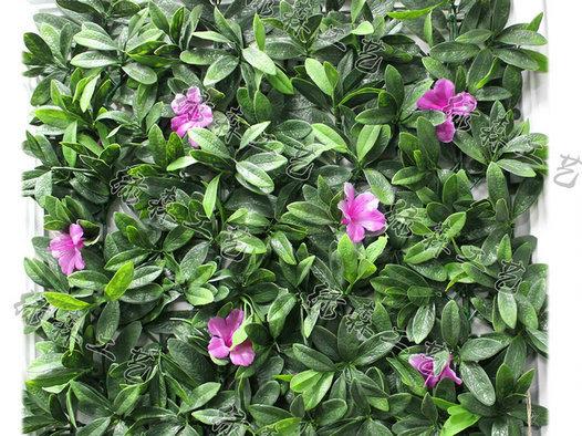 室外植物墙23