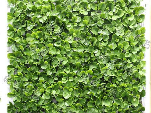 室外植物墙20