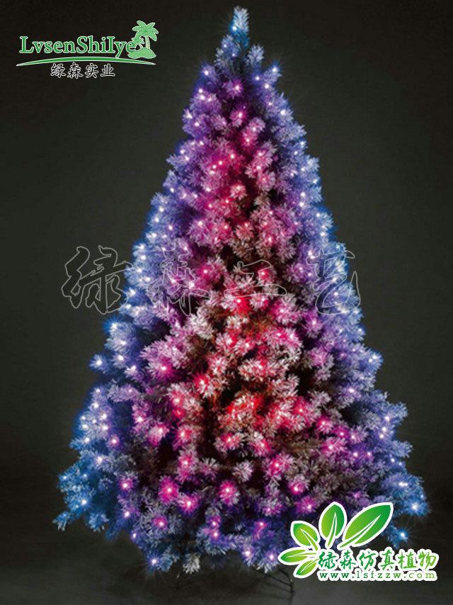 圣诞树11