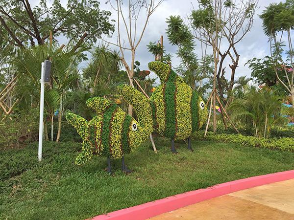 AG亚博绿植