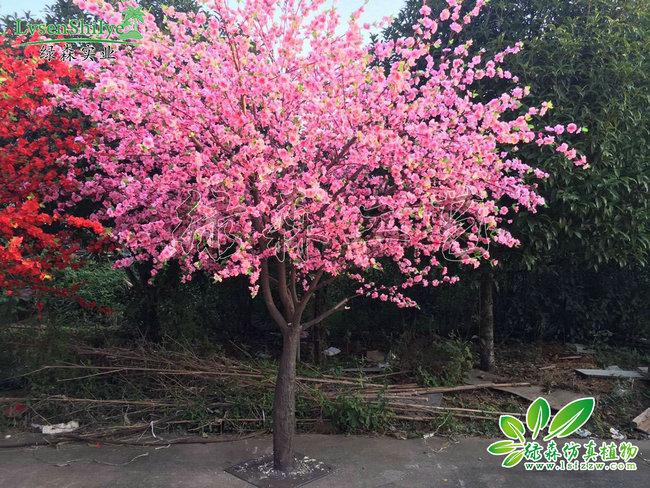 AG亚博桃花树
