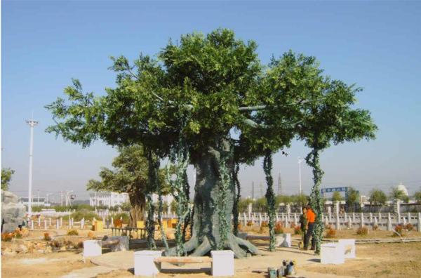 AG亚博榕树